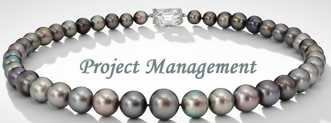 Project Management Definition